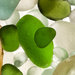 Sea Glass FranCollinPhoto005