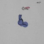 doodles & illustrations
