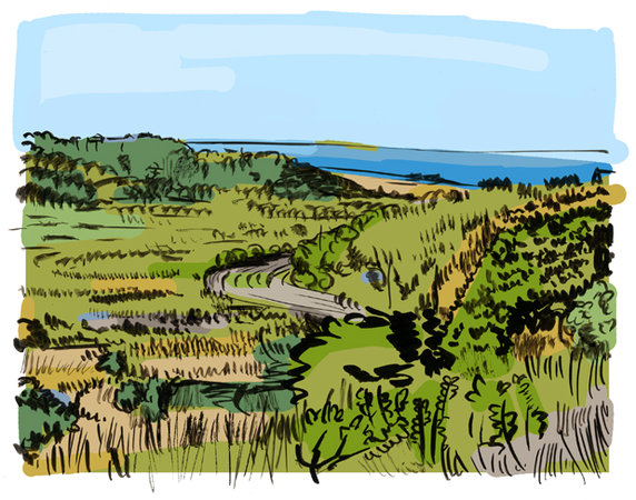 cape cod view, ink