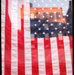 Dan Bigelow Flag 06