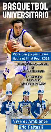 borregos basket