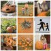 DanBigelow Pumpkins3x3