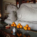 &quot;Buddha Among the Oranges&quot;